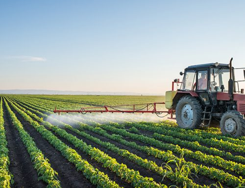 The impact of climate change on Canadian agriculture